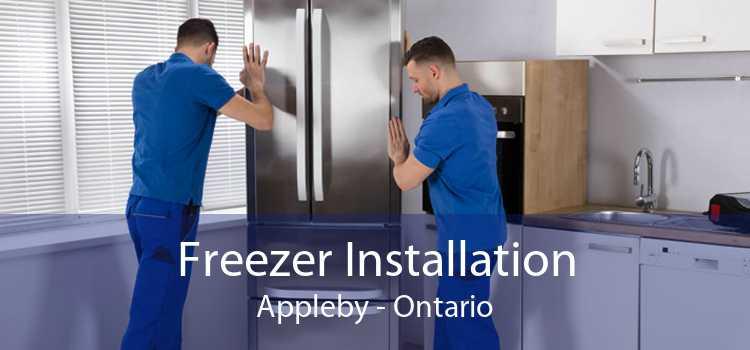 Freezer Installation Appleby - Ontario
