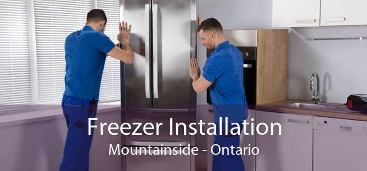 Freezer Installation Mountainside - Ontario