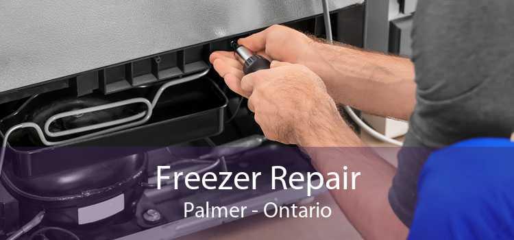 Freezer Repair Palmer - Ontario