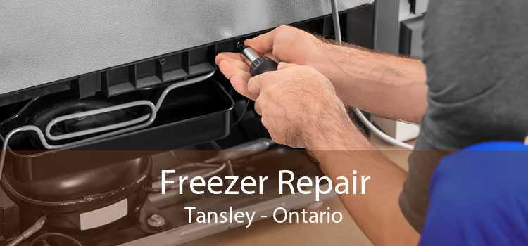 Freezer Repair Tansley - Ontario