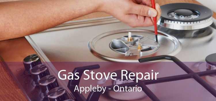Gas Stove Repair Appleby - Ontario