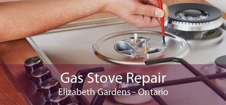 Gas Stove Repair Elizabeth Gardens - Ontario
