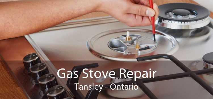 Gas Stove Repair Tansley - Ontario