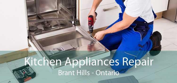 Kitchen Appliances Repair Brant Hills - Ontario