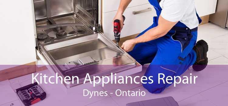 Kitchen Appliances Repair Dynes - Ontario