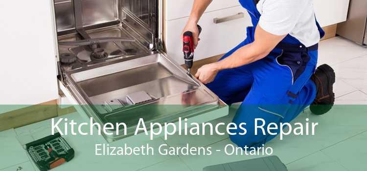 Kitchen Appliances Repair Elizabeth Gardens - Ontario
