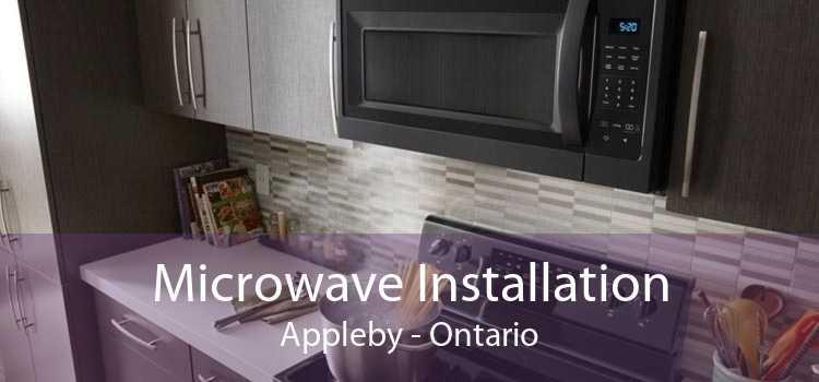 Microwave Installation Appleby - Ontario