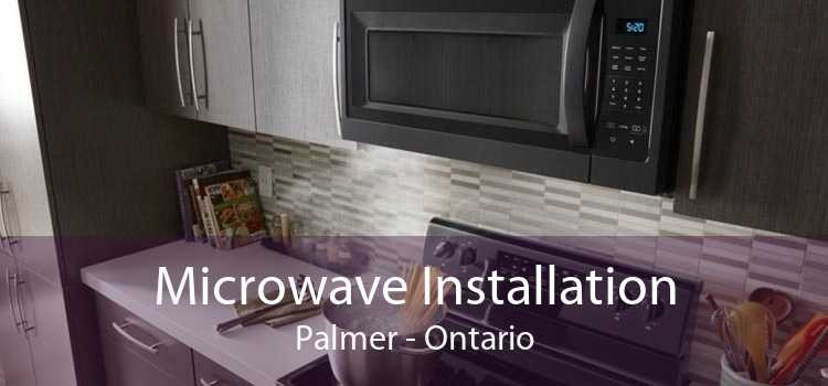 Microwave Installation Palmer - Ontario