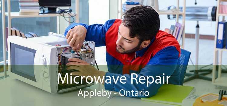 Microwave Repair Appleby - Ontario