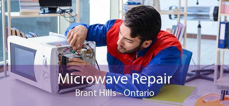 Microwave Repair Brant Hills - Ontario