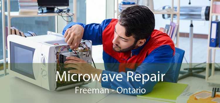 Microwave Repair Freeman - Ontario