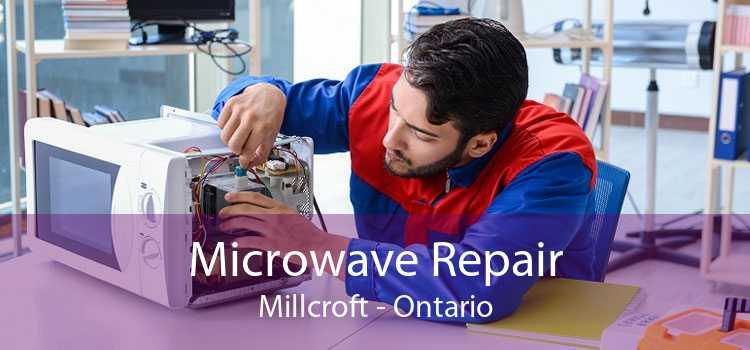 Microwave Repair Millcroft - Ontario