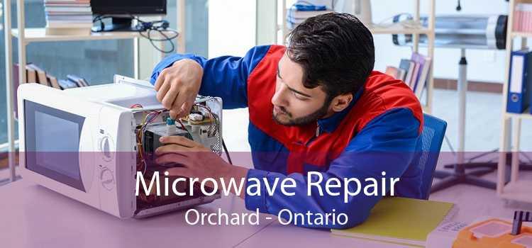 Microwave Repair Orchard - Ontario