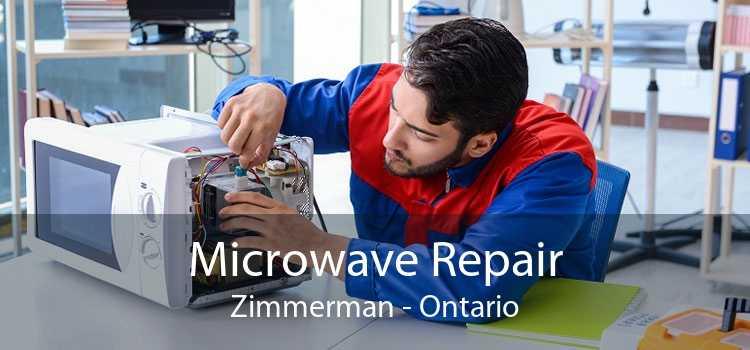 Microwave Repair Zimmerman - Ontario