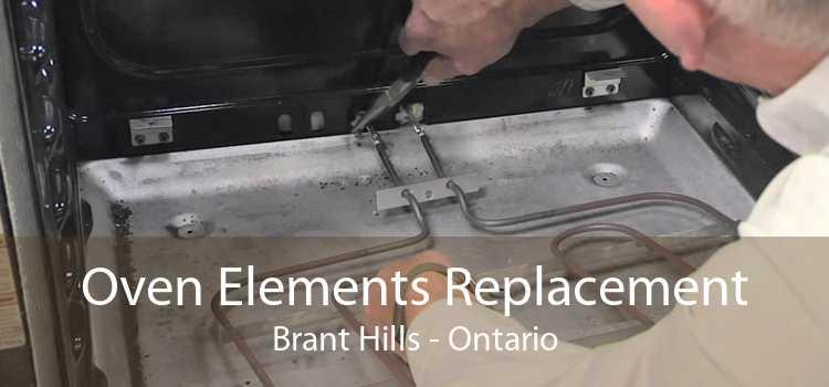 Oven Elements Replacement Brant Hills - Ontario