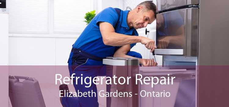 Refrigerator Repair Elizabeth Gardens - Ontario